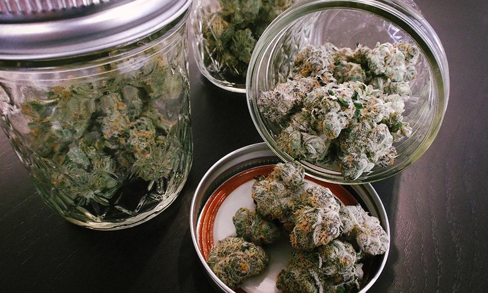大麻の消費期限は?大麻はどのように保管するべきか